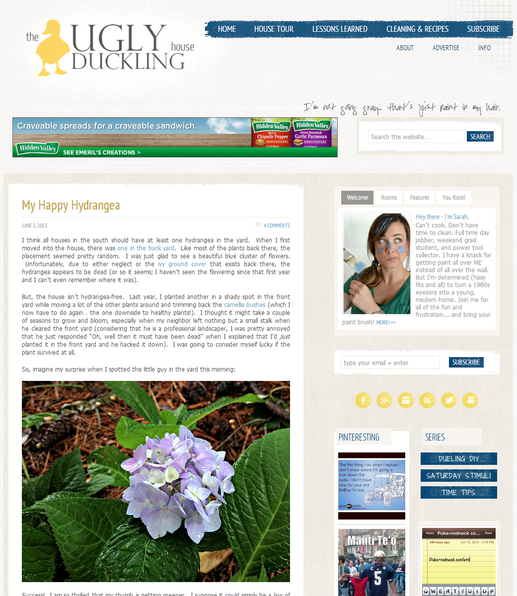 The Ugly Duckling House blog